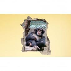3D fototapeta, Gorila, 100 x120cm