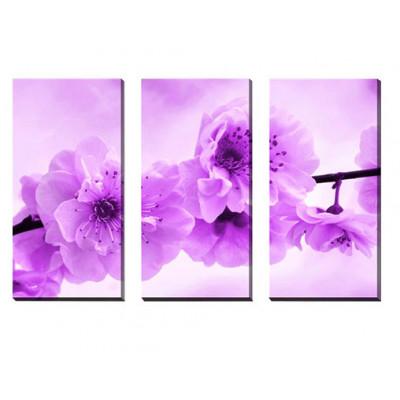 3-dielny obraz na plátne 3x30x70cm KVET fialovo-biely S25