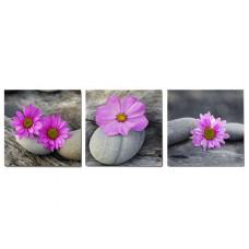 3-dielny obraz na plátne 3x20x20cm Kamene a Kvety fialovo-šedý