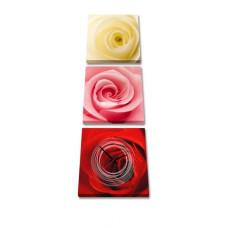 3-dielny obraz s hodinami, Ruže, 35x105cm