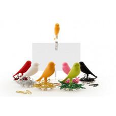 Miska na svorky Qualy Nest Sparrow, rôzne farby