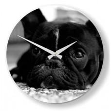 Nástenné hodiny Nextime 5173 DOG 20cm
