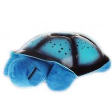 Nočná korytnačka modrá 2
