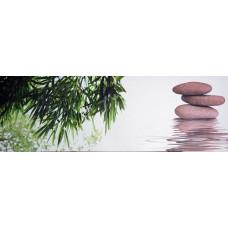 Obraz na plátne 30x90cm Stone Bambus prc169