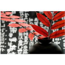 Obraz na plátne 50x70cm Zen váza a kvet oranžovo-čierny