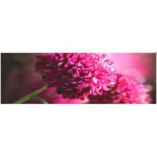 Obraz na plátne 45x140cm KVETY ružový