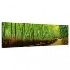 Obraz na plátne Panoráma, Bambus, 158x46cm