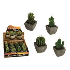 Sviečka - kaktus