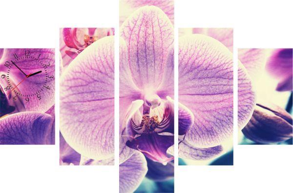 5-dielny obraz s hodinami, Orchidea, 100x70cm